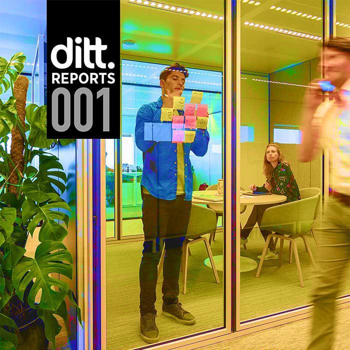 Ditt. report 001