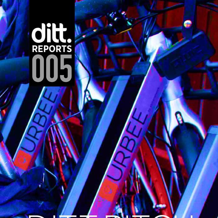 Ditt. report 005